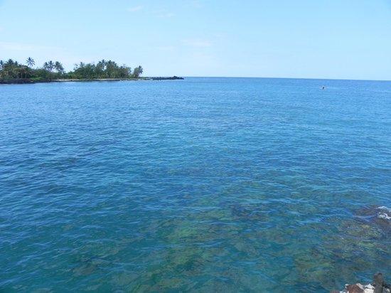 Kealakekua Bay State Historical Park: Pretty Bay