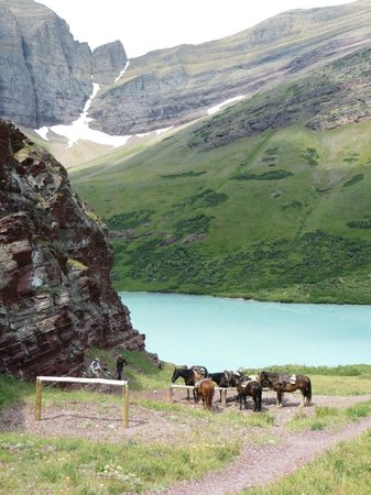 Swan Mountain Outfitters Day Tours : Cracker Lake lunch break, Glacier National Park