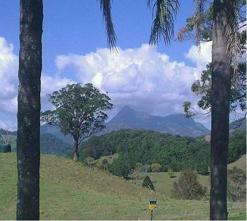 View of Mt Warning from Hillcrest Mountain View Retreat