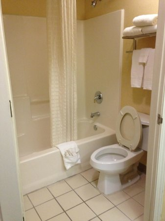 Baymont Inn & Suites Jacksonville: Bathroom