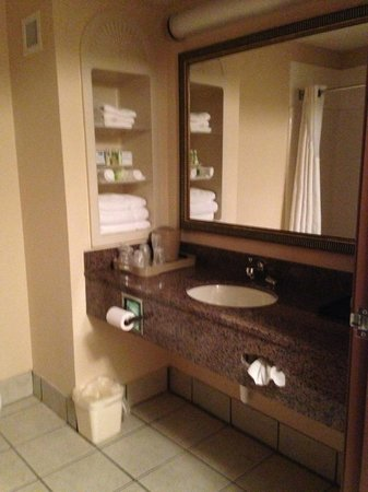 Holiday Inn Express Hotel & Suites Douglas: Bathroom