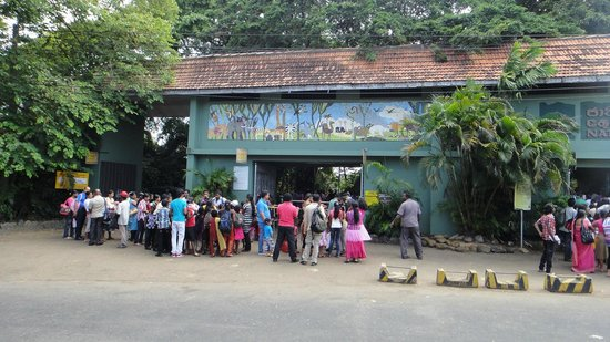 National Zoological Gardens of Sri Lanka: many families & children arriving early