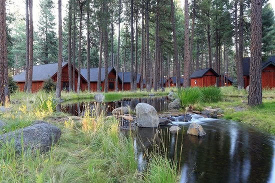 Five Pine Lodge & Spa: Grounds
