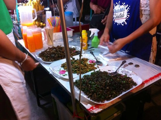 Bophut Walking Street: Couldn't quite bring myself to try the fried insects.......