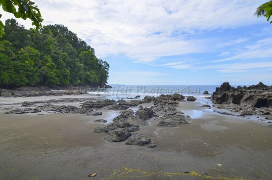 Campanario Biological Station : Beach in front