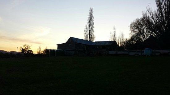Brockley Estate: Property at sunset