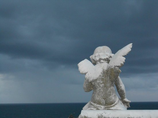 Dingo Tours: Angel at Waverley Cemetary