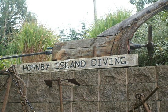 Hornby Island Diving Lodge: Welcome to :