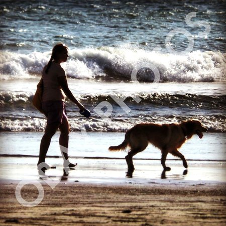walk with dog at Double Six Beach