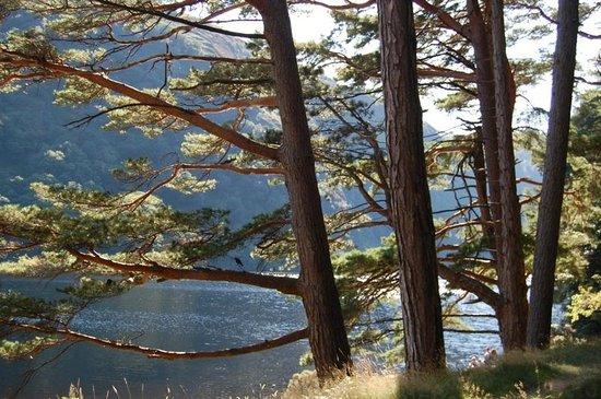 Glendalough Hotel: Upper lake view