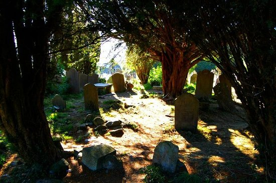 The Glendalough Hotel: The cemetry in the monastic city