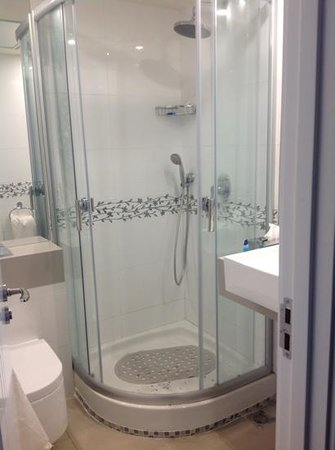 Best Western Regency Suites: great shower, one of two in this suite.