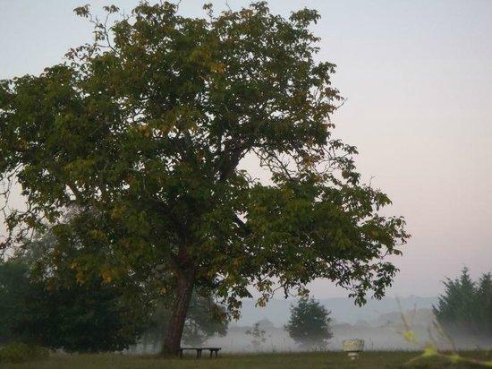 La Closerie du Lys - Brume d'automne