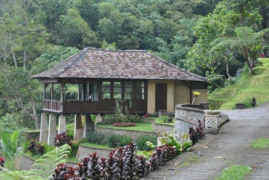 Bagus Jati Health & Wellbeing Retreat: Une villa