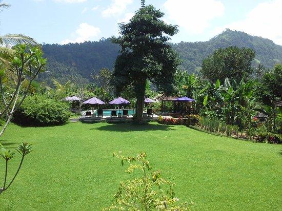 Subak Tabola Villa: vue de la chambre