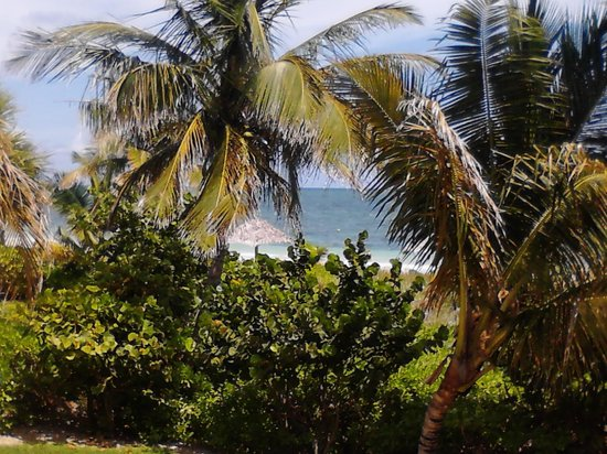 Taino Beach Resort & Clubs: rm 3204 view from balcony