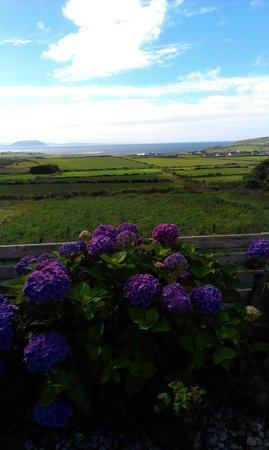 Malin Head View B&B: View from the patio of the bed and breakfast