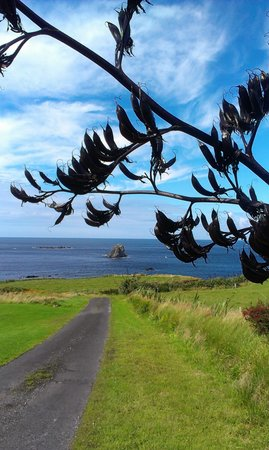 Malin Head View B&B: The road the bed and breakfast is on