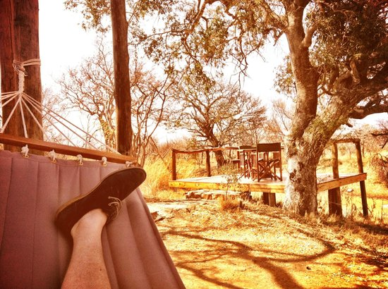 Bushwa Private Game Lodges: Hammock under treehouse & deck overlooking waterhole