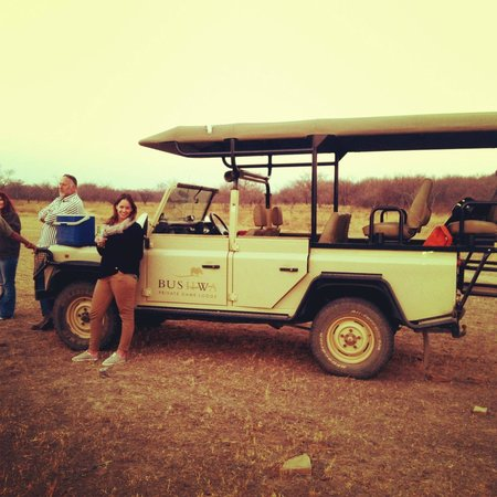 Bushwa Private Game Lodges: Game Drive