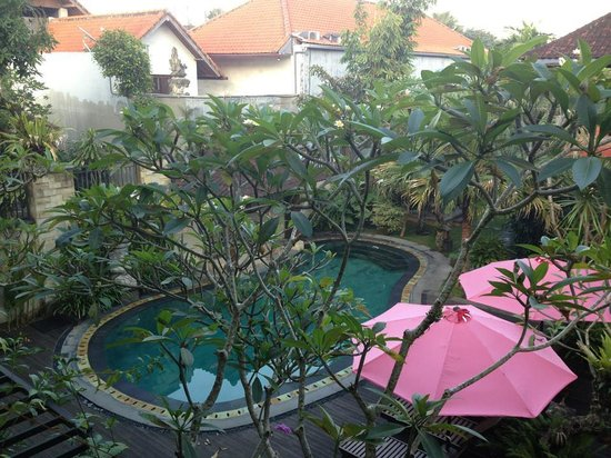 Lumbung Sari Cottages: View of the pool from our room.