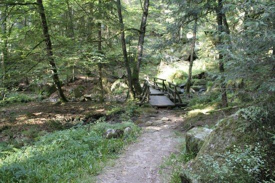 Logis de la Grande Cascade : En route pour le trou de l'enfer