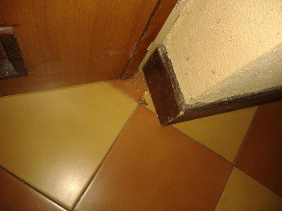 Centro Vacanze La Limonaia: Heuschrecke in unserem Zimmer