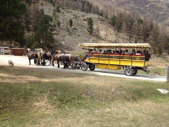 Hotel Restaurant Roseg Gletscher: Anreise im Pferde Omnibus.....
