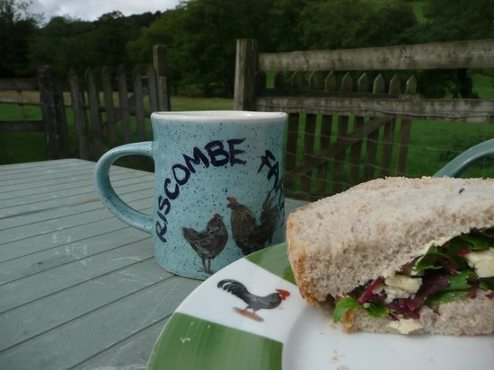 Riscombe Farm Holiday Cottages: they even have their own mugs!