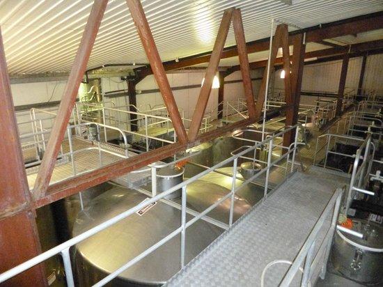 Sandalford Restaurant : Fermenting vessels