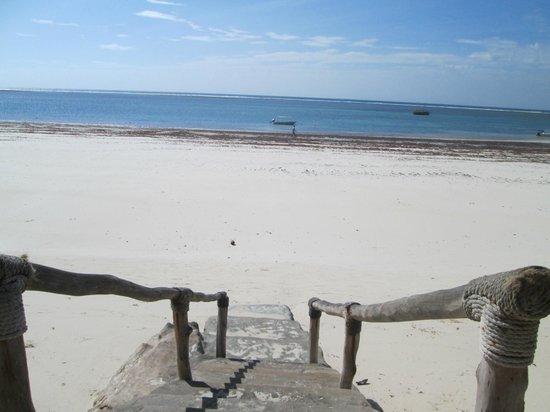 Diani Sea Resort: tropical :)