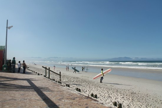 Stoked School of Surf Lessons & Surf Trips: beach
