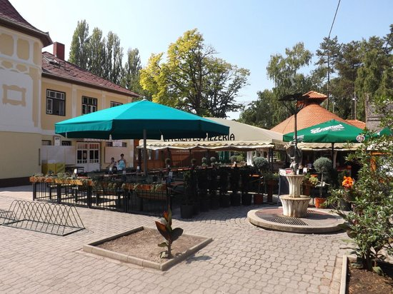 Gomba etterem es pizzeria: The much larger 'outside' eating area. Be warned: smoking is allowed here.