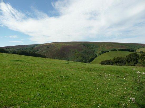 Doone Valley : Fields
