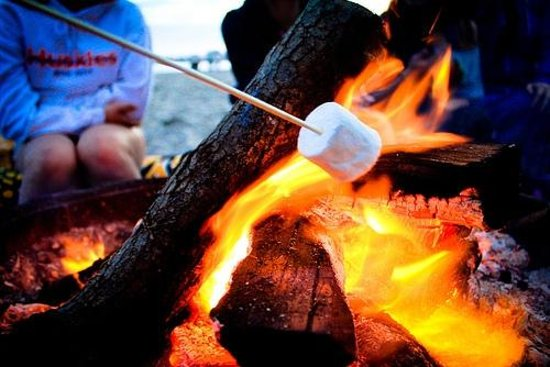 Boe Rigg Campsite & Bunkhouse: Campfires on every pitch
