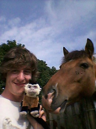Hideaway Huts at Treworgey: myself, a monkey (fake) and a horse (real)