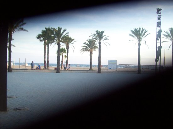 California Garden : Playa