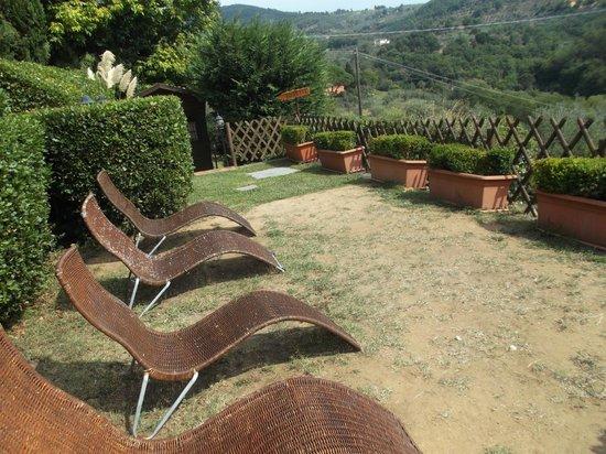 Collina Toscana Resort: area relax accanto alla piscina
