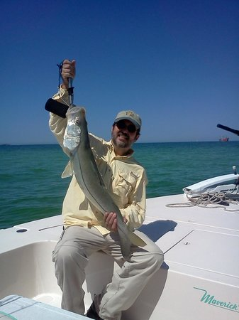 All Catch Charters: catch of the day.