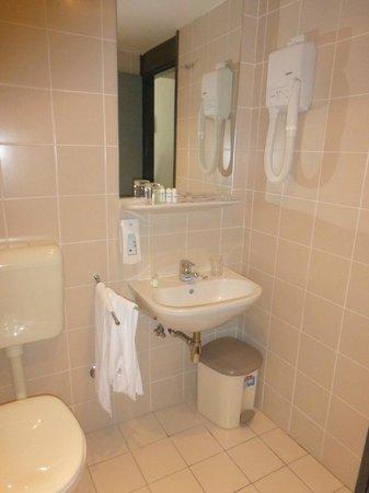 Grabovac Hotel : bagno di camera doppia
