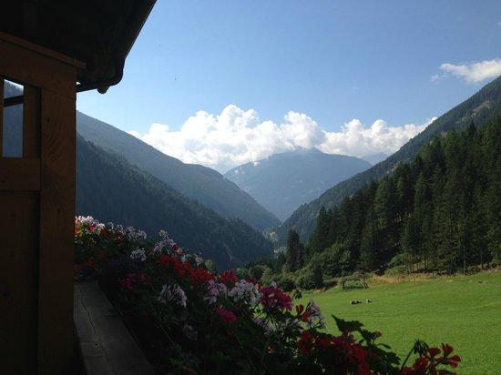 Ferienwohnungen Niederarnigerhof Familie Bauernfeind: Blick vom Balkon