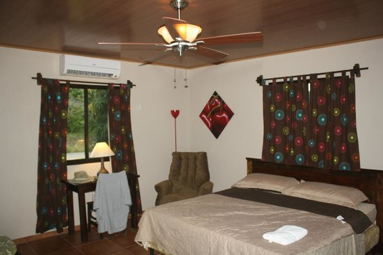 Hacienda Doña Carmen: view of room #1 with king bed, fan, a/c, two windows