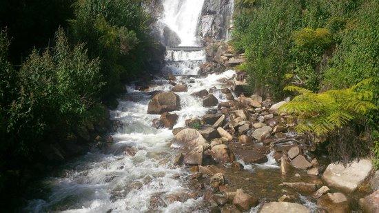 Steavensons Falls: pretty