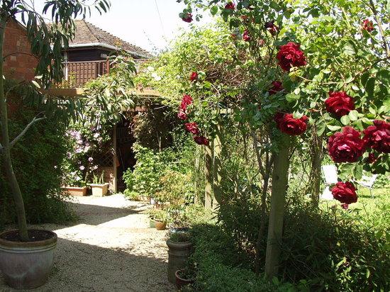 Leadon House Hotel: The Rose Walk
