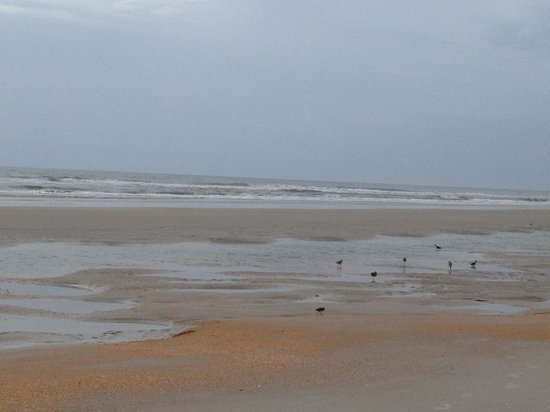 St. Augustine Beach: a light orangey color from shells