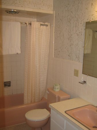 Waterfront Inn - Mackinaw City: Pink Bathroom