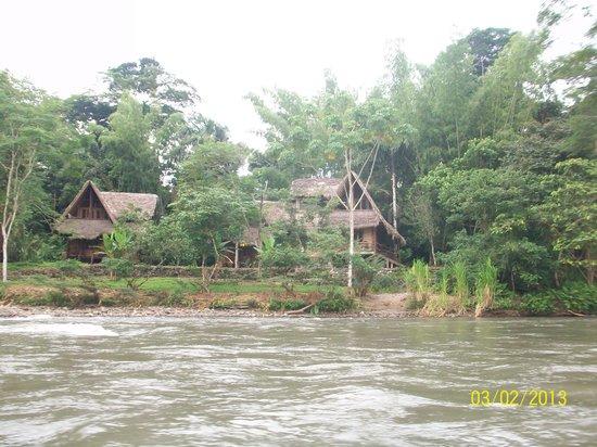Cotococha Amazon Lodge: Desde el río Napo