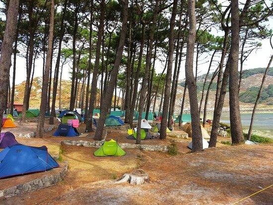 Camping Cies Islands: Camping