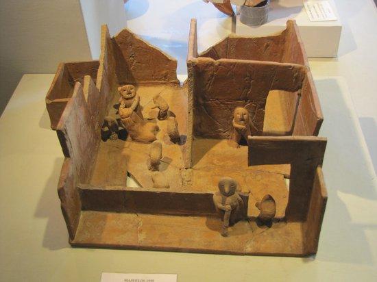 Didactic Museum Antonini (Museo Antonini): Museo Antonini