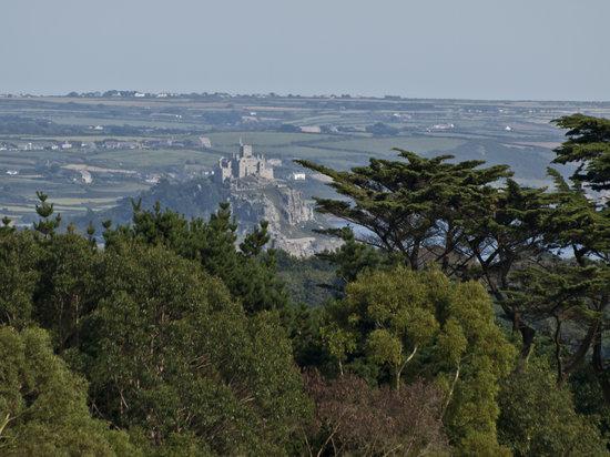 Trengwainton Garden: St Michael's Mount from the terrace